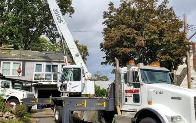 Naugatuck, CT – Affordable Property Maintenance | Tree Service Near Me in Southington, CT