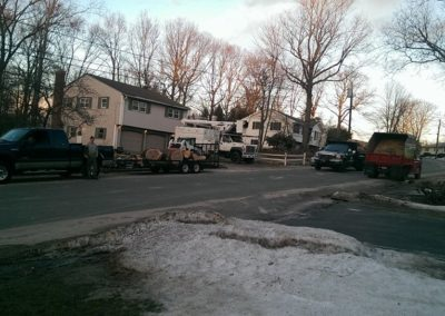Watertown, CT - Tree Removal Project - Tree Trimming, Cutting, Maintenance