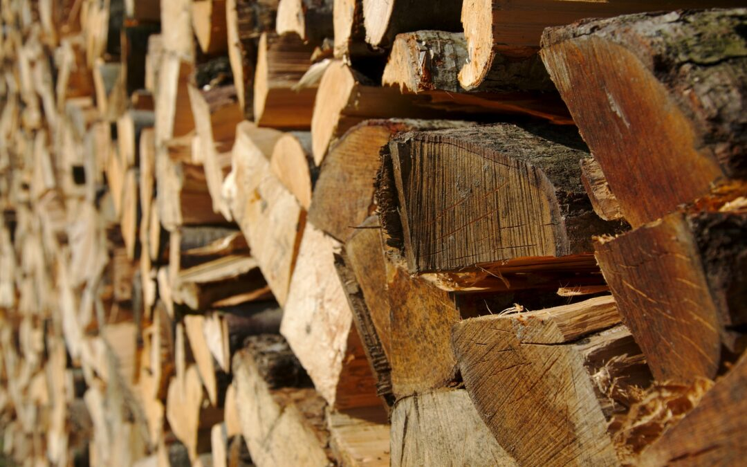 Naugatuck, CT – High Quality, Seasoned Firewood Delivery Service Near Me