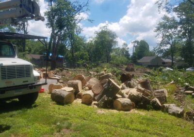 Bethany, CT | Tree Removal Project | Emergency Tree Cutting & Removal