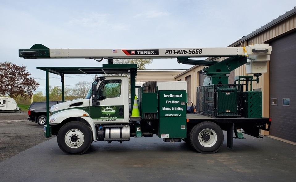 Beacon Falls, CT | Tree Removal Service | Best Tree Cutting & Maintenance Near Me