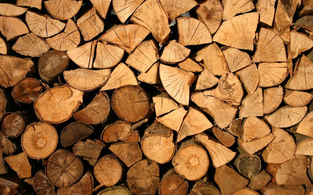 Bethany, CT   Split Seasoned Hardwood Firewood for Sale & Delivery Near Me